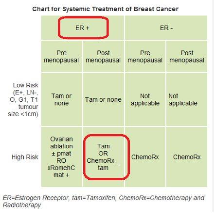 Nolvadex breast cancer risk